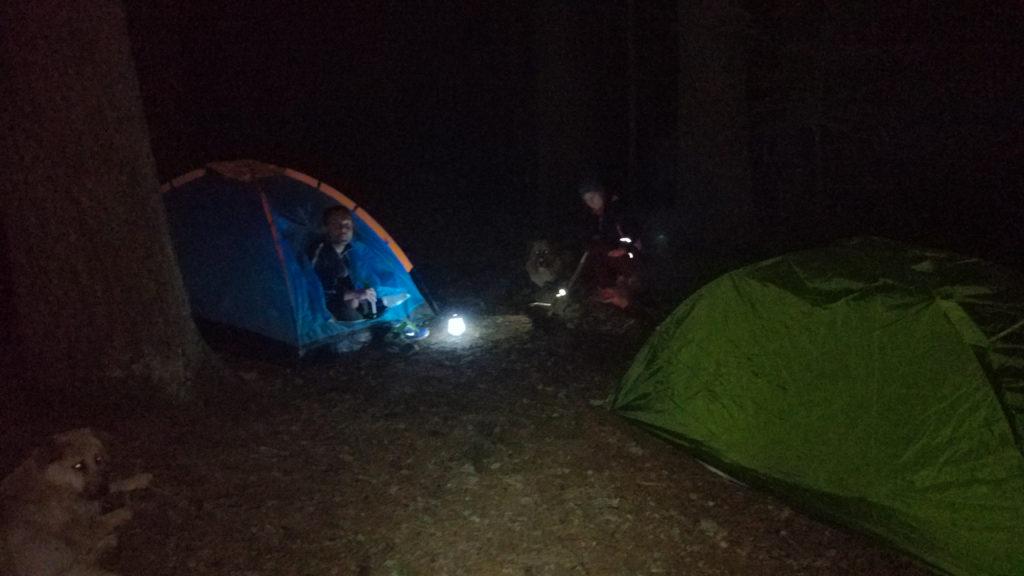 Obóz w lesie przy szlaku